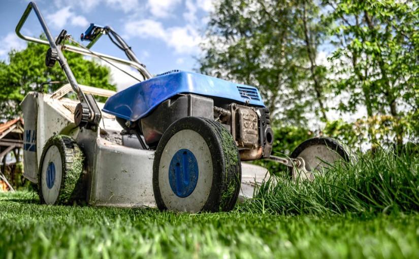 Tout ce que vous devez savoir pour bien jardiner